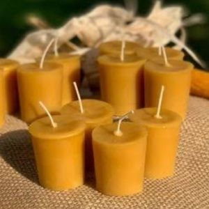 NWT Gold Canyon Orange scent votive candles